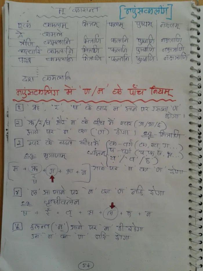 5 Laws For Neuter 3rd Vibhakti